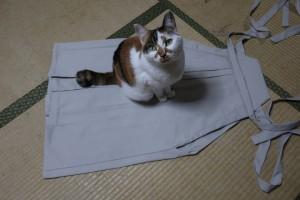 手作り 袴